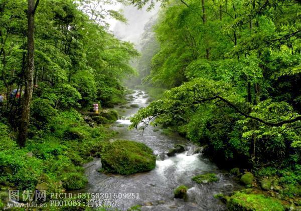 湖南-张家界-金鞭溪景区